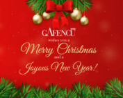 Merry Christmas from the Gafencu Team
