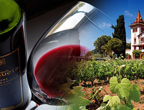 Tempranillo: The seductive charms of Spain's scarlet wine