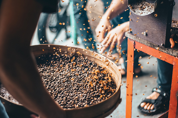 Coffee cultivation process_gafencu coffee beans the best in the world