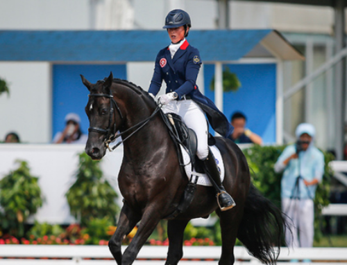 Equestrian Lessons: Where to go horse riding in Hong Kong